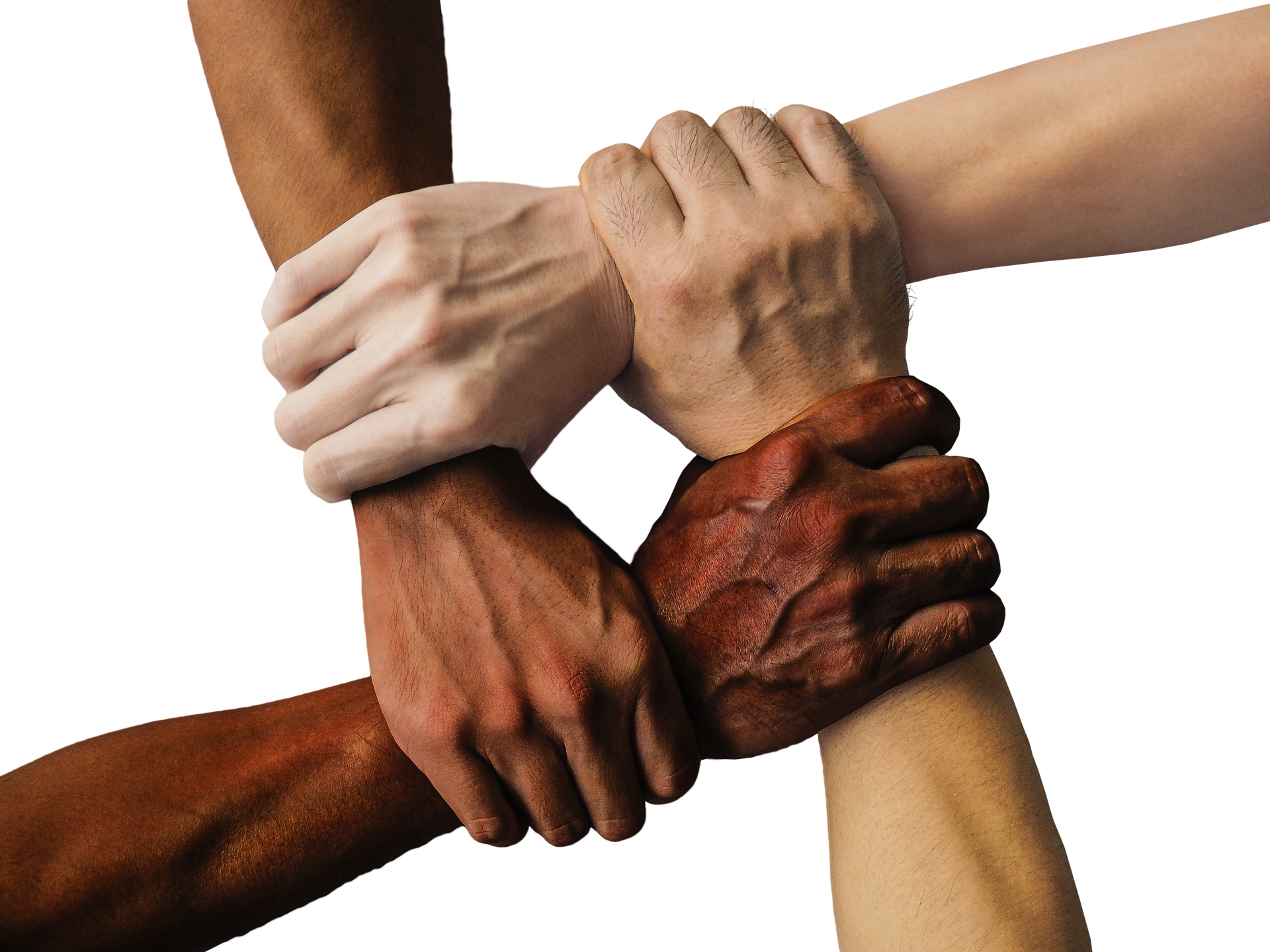 多様性、ダイバーシティ、協力